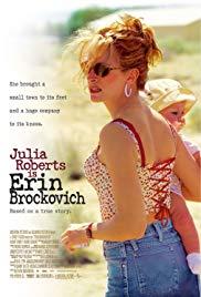 Erin Brockovich Book Cover