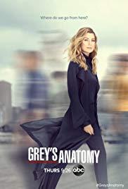 Grey's Anatomy: Die jungen Ärzte Book Cover