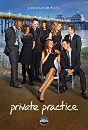 Private Practice - 4. Staffel Book Cover