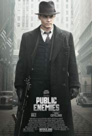 Public Enemies Book Cover