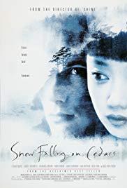 Schnee, der auf Zedern fällt Book Cover
