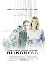 Die Stadt der Blinden Book Cover