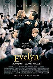 Evelyn oder Ein Vater kämpft um seine Kinder Book Cover