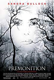 Die Vorahnung Book Cover