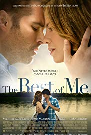 The Best of Me - Mein Weg zu Dir Book Cover